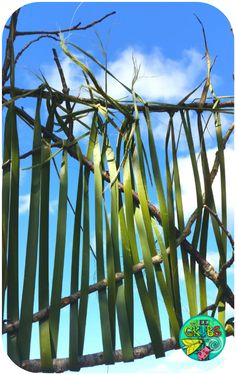 Blog & Free Resources Flax Weaving, Basket Weaving, Flax Flowers, Kiwiana, Waldorf Toys, Free Blog, Activities For Kids, Fair Grounds, Classroom Resources