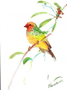 Hey, I found this really awesome Etsy listing at https://www.etsy.com/listing/216074104/tropical-finch-bright-colored-bird-art