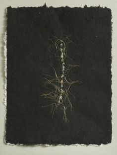 Michele Brody . Recycled handmade paper drawings created by planting flax seeds in recycled linen pulp that sprout as if in soil