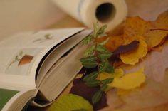 Do it yourself - Blumenpresse   Die Blätter fallen im Herbst und die Kinder erfreuen sich an den vielen bunten Spiel-Möglichkeiten. Die Vergänglichkeit ein wenig aufhalten kannst du, indem du die Herbstblätter oder natürlich auch... Bunt, Fall Leaves, Game, Flowers