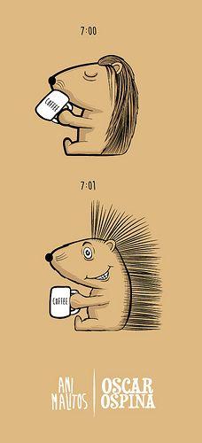 PORCUPINE-COFFEE (illustration) By Oscar Ospina