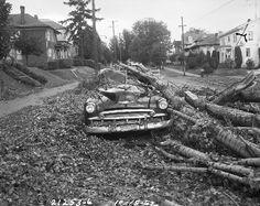 Columbus Day Storm damage, 1962