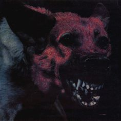 Artist: Protomartyr Album: Under Cover Of Official Right Year: 2014 Country: USA Style: Post-Punk Nocturne, Dark Wave, Creepy, Scary, Mileena, Arte Obscura, Arte Horror, Best Albums, Vinyl