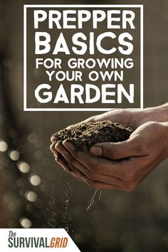 How to grow the best kind of food for your survival? Here are some prepper basics for the best crops you can grow on your own homestead garden. Survival Quotes, Survival Food, Survival Prepping, Emergency Preparedness, Survival Skills, Wilderness Survival, Survival Hacks, Urban Survival, Outdoor Survival