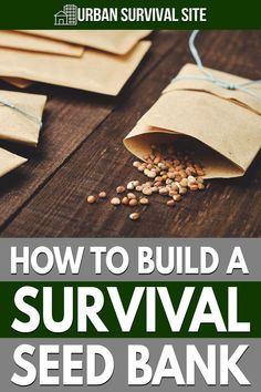 A survival seed bank is a collection of seeds that you can use to grow a large and diverse garden in a survival scenario. Urban Survival, Survival Food, Wilderness Survival, Survival Tips, Survival Skills, Grow Food, Seed Bank, Disaster Preparedness, Shtf