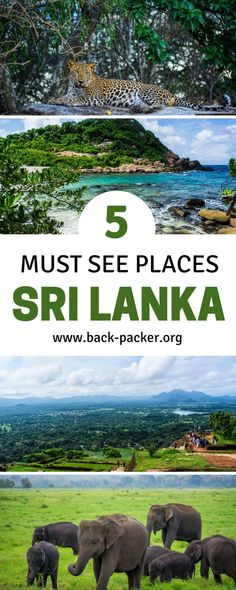 Five of the most beautiful places to visit in Sri Lanka, from a safari in Yala National Park to living the beach life and snorkeling on Pigeon Island to tasting tea in the highlands around Kandy. From Colombo to Yala and beyond, this bucket list worthy destination guide includes tips for compiling the ultimate Sri Lanka travel itinerary. Travel in Asia. | Back-Packer.org #SriLanka