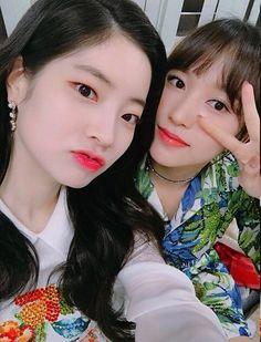Daehyun y mina Extended Play, Korean Group, Korean Girl Groups, Twice Once, Gif Photo, Twice Dahyun, Im Nayeon, Hirai Momo, Wattpad