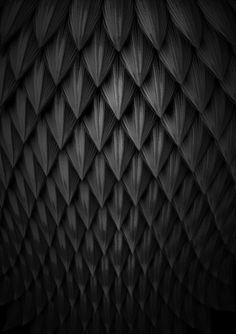 scales by: Gabriel Zambrano