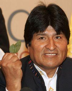 """Con una hoja de coca en la mano, el presidente de Bolivia, Evo Morales, defendió hoy ante el plenario de la Comisión de Estupefacientes de la ONU reparar """"un error histórico"""" y despenalizar en su país esa planta para usos tradicionales y medicinales."""