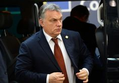 Miklós Haraszti: I watched a populist leader rise in my country–That's why I'm genuinely worried for America – Hungarian Spectrum