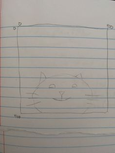 My Cat Sketch