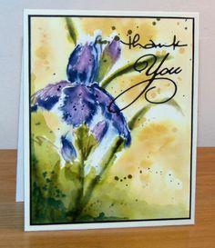 watercolor iris thank you card by Micheline Jourdain