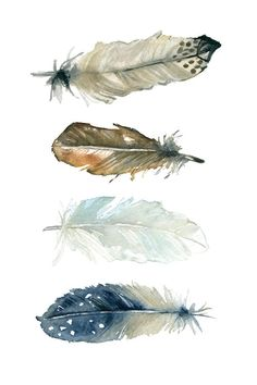 Feather Collection I Canvas Print by Carol Robinson Watercolor Feather, Feather Painting, Feather Art, Watercolor Artwork, Watercolor Animals, Watercolor Illustration, Baby Feet Art, Framed Art Prints, Canvas Prints