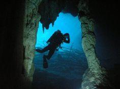 Bild från Easy Chango Diving Dive Center