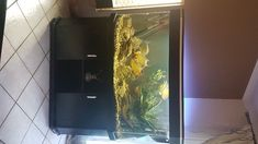 Absolute BARGAIN buy. Stunning fully operational fish tank,including unit, fish