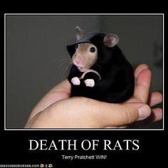 Terry Pratchett's Discworld series Death of Rats!!!