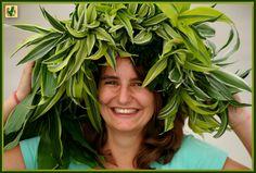Rachel met `n Dragontree variëteiten hoofdtooi.