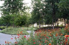 Jardin de Montréal à Shanghai #gardens #LandscapeArchitecture