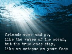 friends come and go, like the waves of the ocean, but the true ones stay, like an octopus on your face