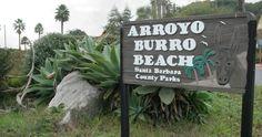 Arroyo Burro County Beach Park em Santa Bárbara #viagem #california