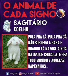 Read Animal De Cada Signo from the story Signos by Sexytaekookv (𝙶𝙰𝚃𝙸𝙽𝙷𝙰) with reads. Mbti, Galaxy Wallpaper, Memes, Words Quotes, Tarot, Zodiac Signs, Cancer, Cute Animals, Humor