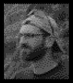 loomsanfran_hexgriderrordiffusion3bit-copy.jpg (617×698)
