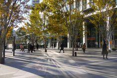 仙台02 Landscape Architecture, Landscape Design, Plaza Design, Commercial Street, Sendai, Environmental Design, Designs To Draw, Street View, Exterior