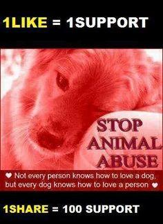 Please, people. Help stop animal abuse.