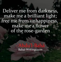 Deliver me from darkness, make me a brilliant light, free me from unhappiness, make me a flower of the rose-garden -'Abdu'l-Baha (Baha'i Prayers, page 29)