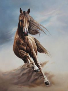 Cute Horses, Pretty Horses, Most Beautiful Horses, Animals Beautiful, Horse Drawings, Animal Drawings, Arte Equina, Horse Wallpaper, Horse Artwork