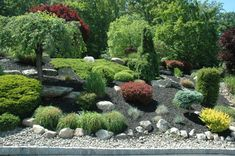Rock Garden with interesting choice of Conifers  - http://mostbeautifulgardens.com/rock-garden-with-interesting-choice-of-conifers/