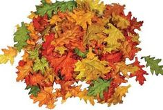 Assorted Mini Fall Color Oak Leaves - Autumn Weddings, Flowergirl Leaves, Fall Decor by Inspired by Nature, http://www.amazon.com/dp/B0044YOK8G/ref=cm_sw_r_pi_dp_c2zhsb0QHZJH3