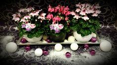 beautyful Christmas creation by Sandra Feenstra of Ypma's Bloemenhandel in Stiens.