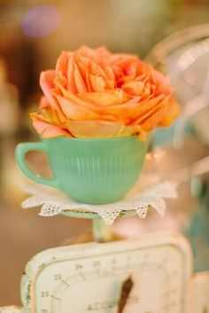 Rose and teacup