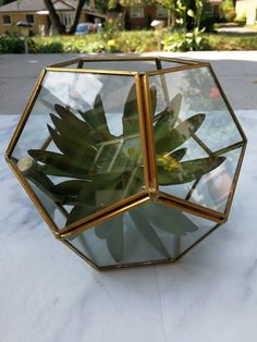 Glass Geometric Terrarium Wedding Table Decor Succulent Planter