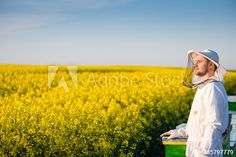 Beekeeper stock photos and royalty-free images, vectors and illustrations Bee Keeping, Royalty Free Photos, Bees, Clip Art, Stock Photos, Flowers, Image, Collection, Royal Icing Flowers