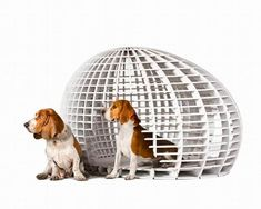 contemporary and unusual pet furniture design ideas for diy projects