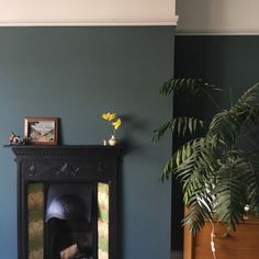 Edwardian living room in Farrow and Ball's Inchyra Blue. Dark Green Living Room, Dark Living Rooms, Home Living Room, Living Room Designs, Living Room Decor, Dining Room, Victorian Living Room, Shabby Chic Living Room, Edwardian House