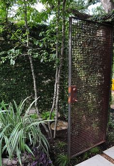 Metal-grid gate (made of woven McNichols mesh) in the ivy-covered wall