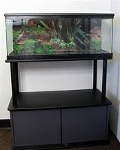 Image Result For 20 Gallon Long Aquarium Stand
