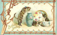 Vintage Cat Postcard 046