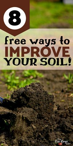 A healthy garden starts with healthy soil. But getting that soil in top condition can take a lot of time and effort- as well as money. Luckily you can amend your garden soil frugally! Read these 8 tips for improving your soil for free! Garden Compost, Garden Soil, Lawn And Garden, Garden Fun, Greenhouse Gardening, Fruit Garden, Garden Yard Ideas, Garden Projects, Garden Layouts