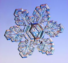 Split Plate Snowflake - photograph of a real snowflake