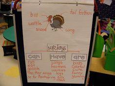 thanksgiving ideas, turkey