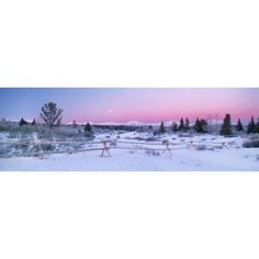 Posterazzi Fv3555 Natural Moments Photography Winter Scenic Canvas Art - Darwin Wiggett Design Pics (44 x 14)