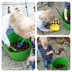 Clarina's Contemplations: Five things to do with Conkers: Savouring the Season