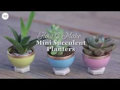 These DIY Succulent Planters Are Actually Made of Plastic Easter Eggs - How to Make Succulent Planters Out of Easter Eggs
