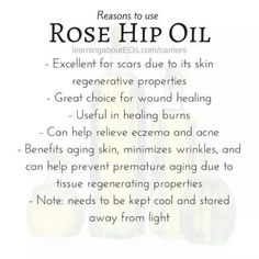 Rose Hip Oil Benefits