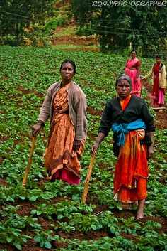 Two women farmers