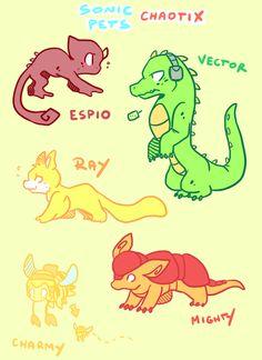 Sonic pets: Chaotix by DiachanX on DeviantArt Sonic Funny, Sonic 3, Sonic Fan Art, Sonic Mania, Sonic The Hedgehog, Silver The Hedgehog, Shadow The Hedgehog, Anime D, Nintendo Sega